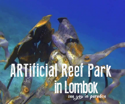 Artificial Reef Park Lombok