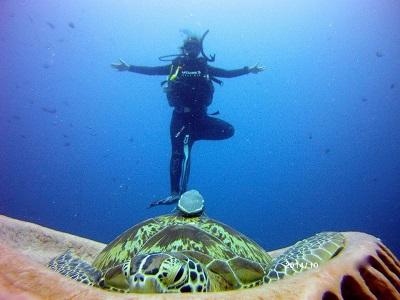 padi-yoga-diver-retreat-course-gili-air-indonesia-turtle