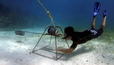 baited-remote-underwater-video-BRUV