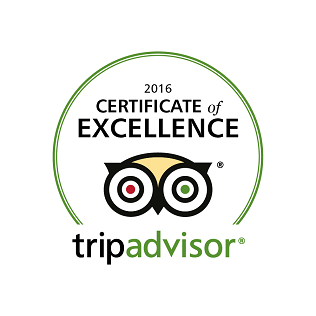 Tripadvisor+Certificate+Of+Excellence-Subwing+Gili+Islands