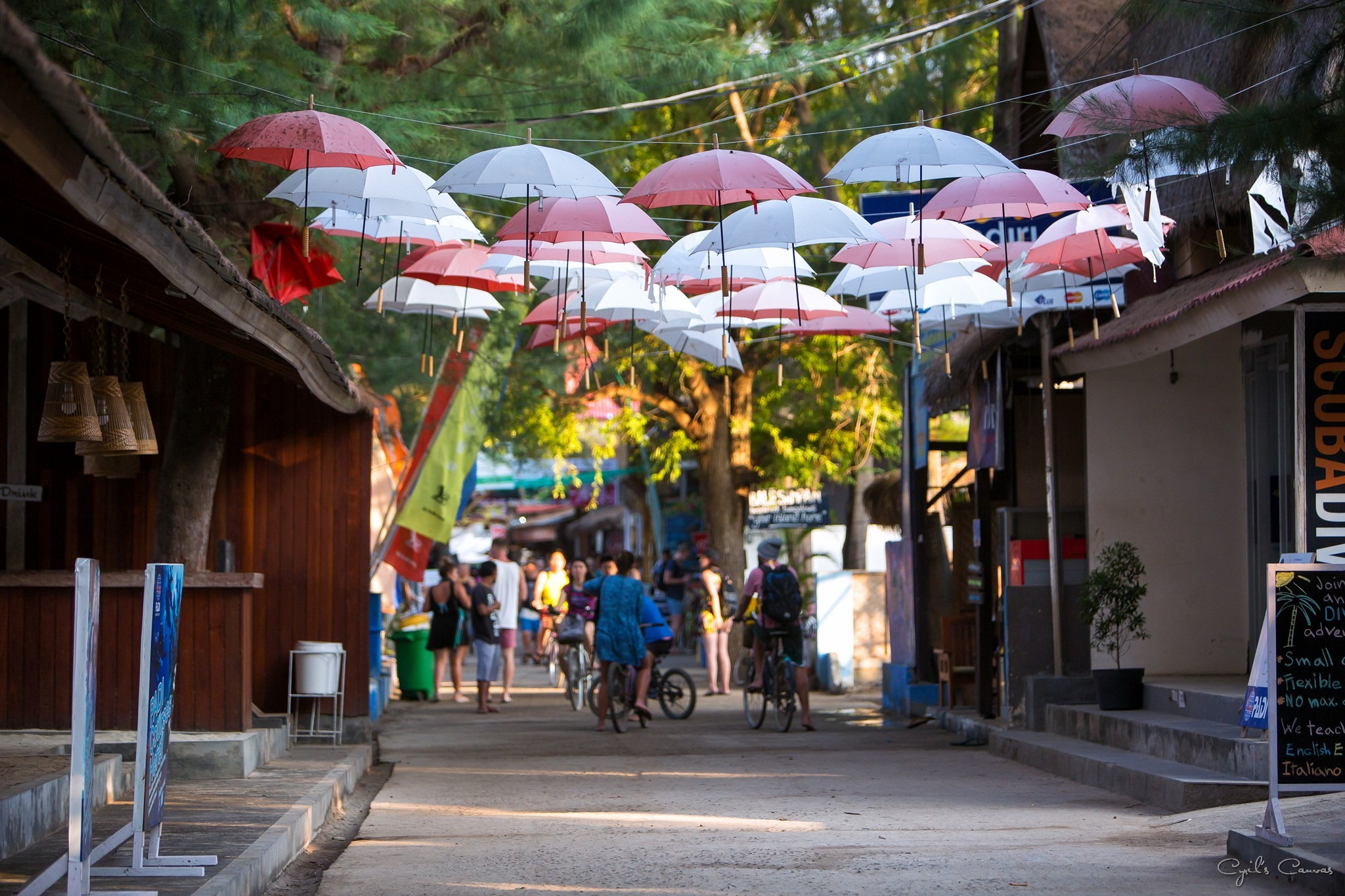 Umbrella Canopy, Gili Trawangan main road.