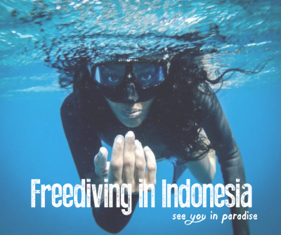 Blog About Freediving In Indonesia