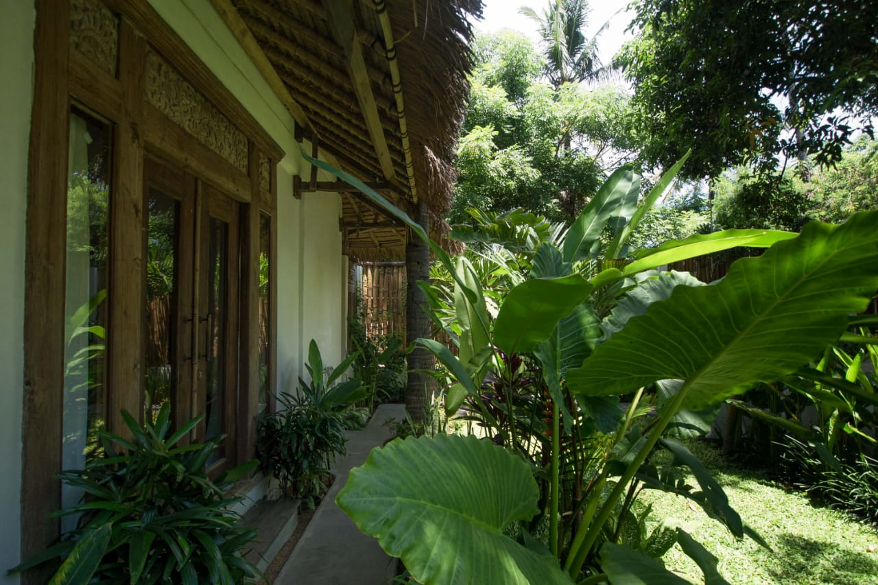 Tropical Lush Garden On The Gili Islands