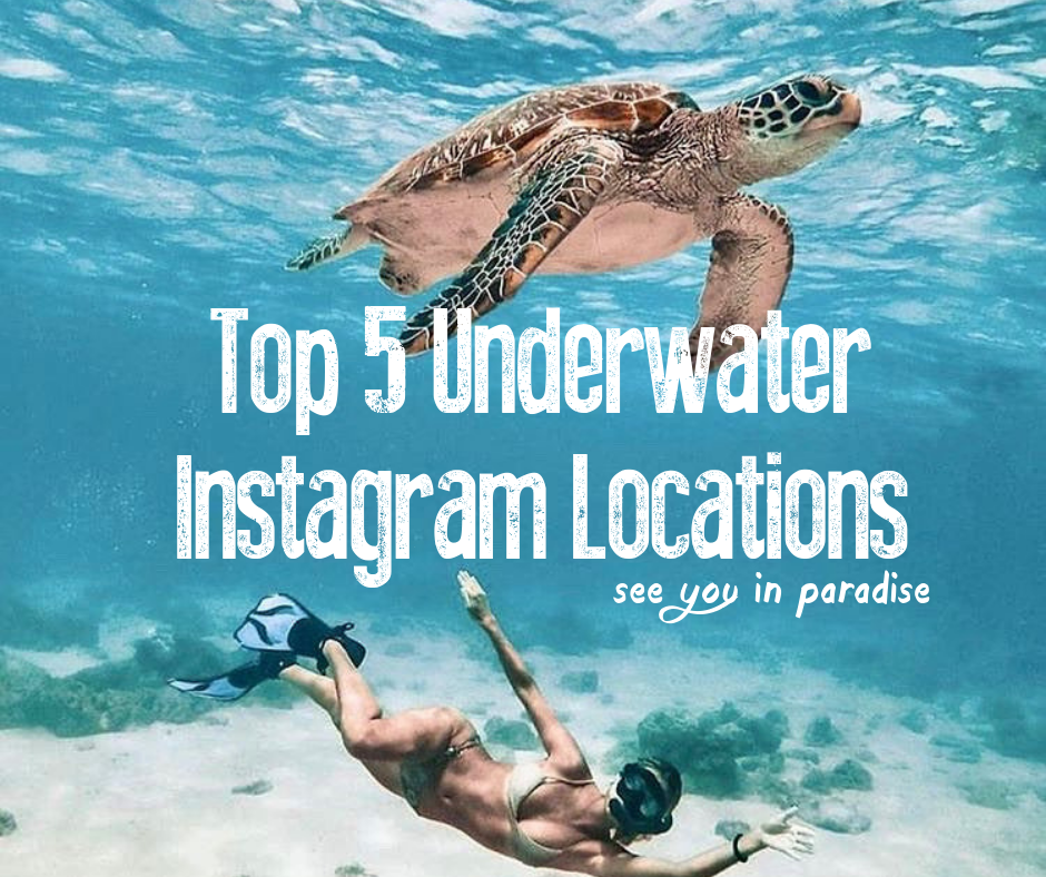 Cover Blog Top 5 Underwater Instagram Locations